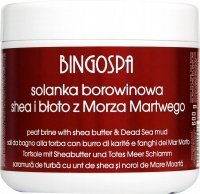 BINGOSPA - Peat Brine - Mud brine with Shea butter and Dead Sea mud - 600 g