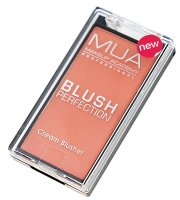 BUY - Blush Perfection Cream Blusher