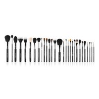 Sigma - Complete Kit - Extravaganza Chrome Kit - Professional set of 29 make-up brushes + case