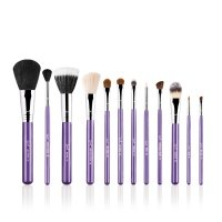 Sigma - ESSENTIAL KIT - MAKE ME CRAZY - Professional set of 12 brushes + tube (VIOLET)