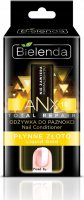Bielenda - ANX Total Repair - Nail Conditioner - Liquid Gold - 11 ml